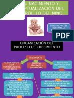 NACIMIENTO Y CONCEPTUALIZACIÓN DEL DESARROLLO DEL NIÑO