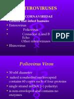 Microbiology Lecture - 20 Enterovirus & Hepatitis
