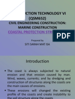 Coastal Protection Structures