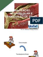 14-Sinalização Celular