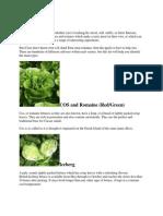 UK Salad Leaf Guide