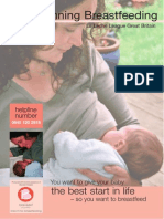 Beginning Breastfeeding Leaflet
