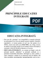 Principi i