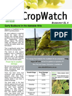 Adelaide Hills Crop Watch 270809