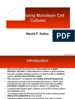 Lecture4- Monolayer Cell Cultures (1)