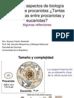 Taller-Castro.pdf