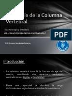 08 Patología de la Columna Vertebral