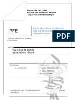 raportpfe-120619040946-phpapp02