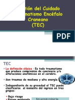 6.- Gestión del Cuidado en TEC