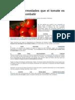 Las 4 enfermedades que el tomate es capaz de combatir.docx
