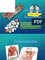 Hormonas Masculinas.pptx