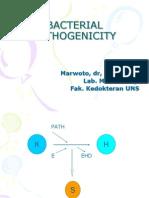 Bacterial Pathogenicity