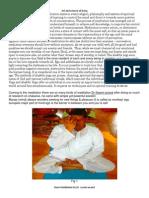 Basic Meditation by Swami Anand