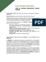9. Sistema Endocrino (1)
