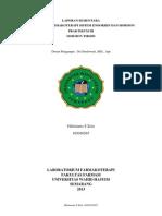 LAPORAN SEMENTARA p3 endokrin.docx