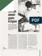 Den første amalgamkrigen (1993)