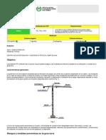 NTP TORRE GRUA.pdf