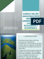 CUENCA DEL RÍO AMAZONAS,PROBLEMÁTICA AMBIENTAL,ZONIFICACIÓN ECOLOGICA Y ECONÓMICA actual