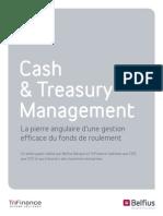 White Paper Cash Management FR.ashx