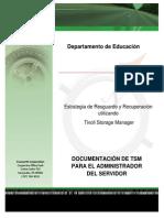 TSM Documentation May 2013.docx