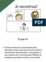 Ciclo Menstrual Vasco Dias