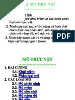 2. MoTV