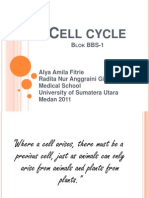 K5- Cell Cycle
