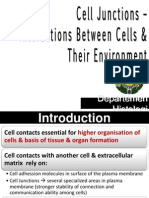 K4- Aplikasi Praktikum Cell Junction-Interactions of Cells k4 (3)