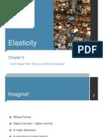 Microeconomics - Elasticity