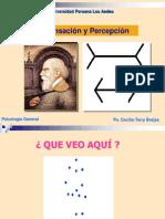 Sensacion y Percepcion Ing 2012-2