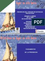 Fundamentos de La Prevencion 2009
