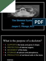 Skeletal System 2