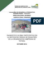 DGP  totora.pdf