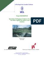 rapportfinalbiomepur11252396941.pdf