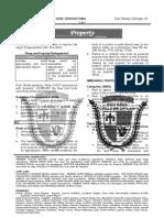 97319687 Property Memaid