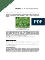 Historia de La Warfarina