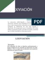 170667162-100562703-LIXIVIACION-DIAPOSITIVAS