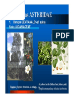10-divisi-magnoliophyta-06-asteridae.pdf
