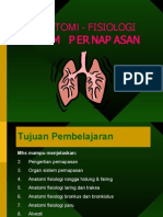 Anfis Respirasi