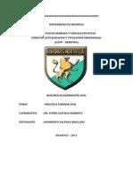 Modelo de Resumen Capt Univ- Hco.