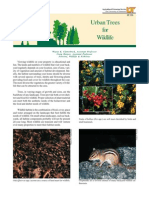 Urban Trees for Wildlife