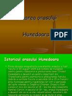 Poluarea Orasului Hunedoara