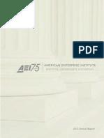 AEI Annual Report 2013