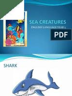 Sea Creatures-year 3