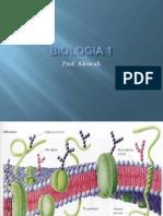 Biologia PPT Aula 09 Membrana Plasmatica