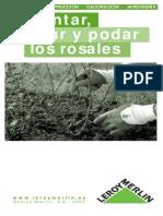Plantar, Cuidar y Podar Rosales