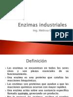 Enzimas Industriales