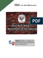 Guía de creación de backup y procedimiento de restauración