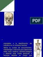 Historia de La Antropologia Forense 2009