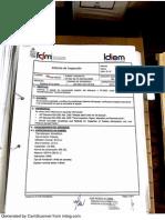 Informe Inspeccion IDIEM
